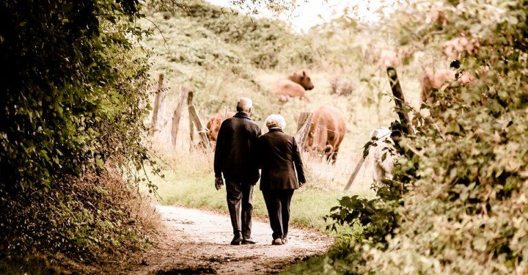 Pensione-reversibilità-requisiti